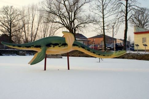 Ichtiozaury z Cieciułowa